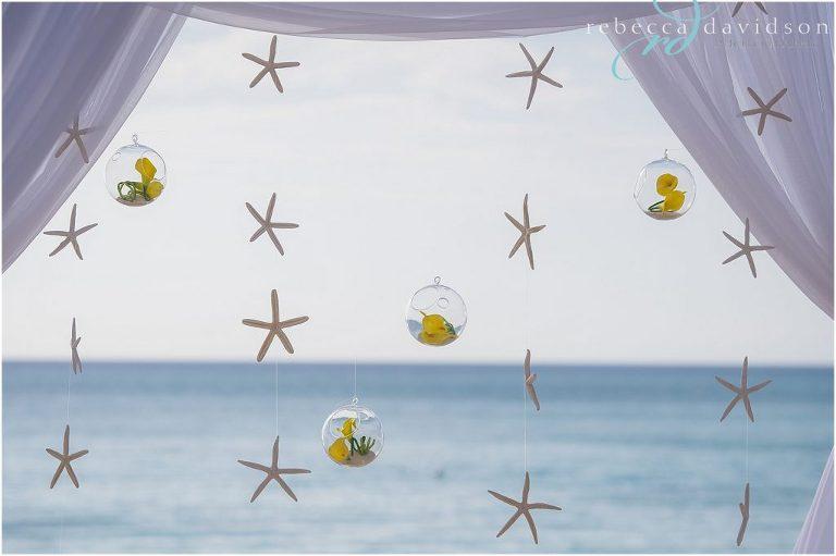 starfish_hanging_from_chuppah