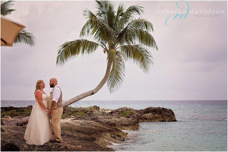 wedding coconut tree